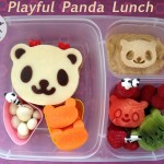playful-panda-lunch